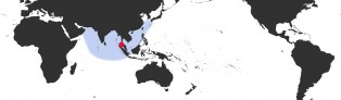Distribution Map of Mauritia arabica asiatica f. gibba