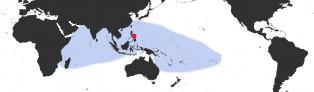 Distribution Map of Chelycypraea testudinaria