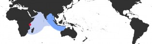 Distribution Map of Arestorides argus contracasta