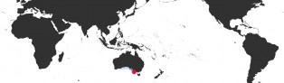 Distribution Map of Notocypraea comptonii comptonii