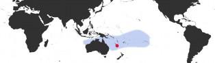 Distribution Map of Palmadusta clandestina candida